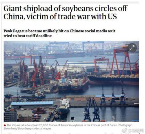 那艘夺命狂奔的大豆船,还在大连港转圈!网友心疼:大豆都快出酱油了
