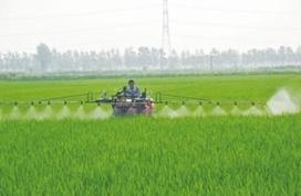 胡春华强调 大力推进农业农村投资建设
