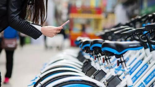 哈罗单车涉嫌顶风投放新车 公司称是在置换旧车