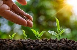 孙李平:以标准化助力绿色发展,推动碳达峰、碳中和目标实现